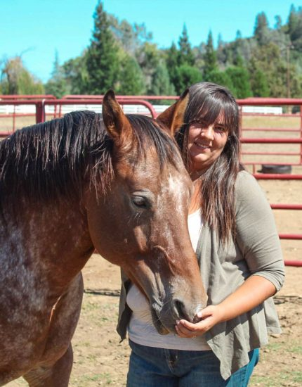 Alexis Brasier, horse trainer